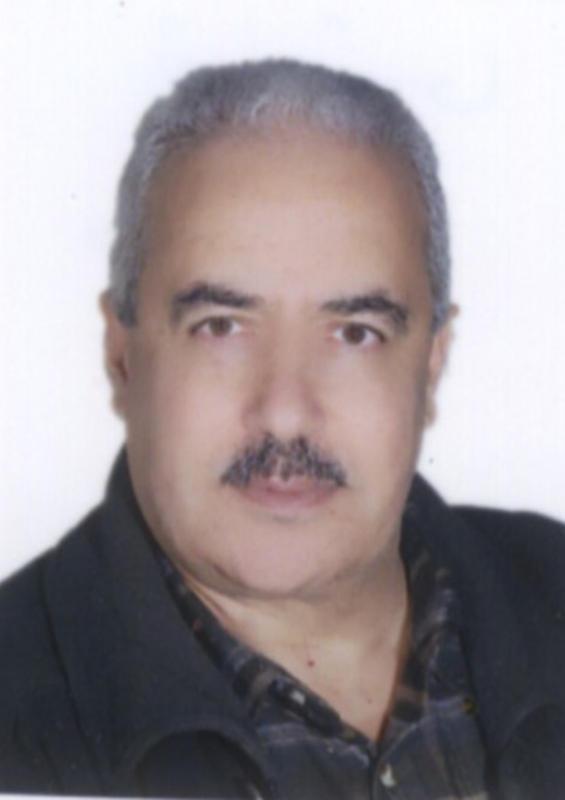 د. محمد النويري